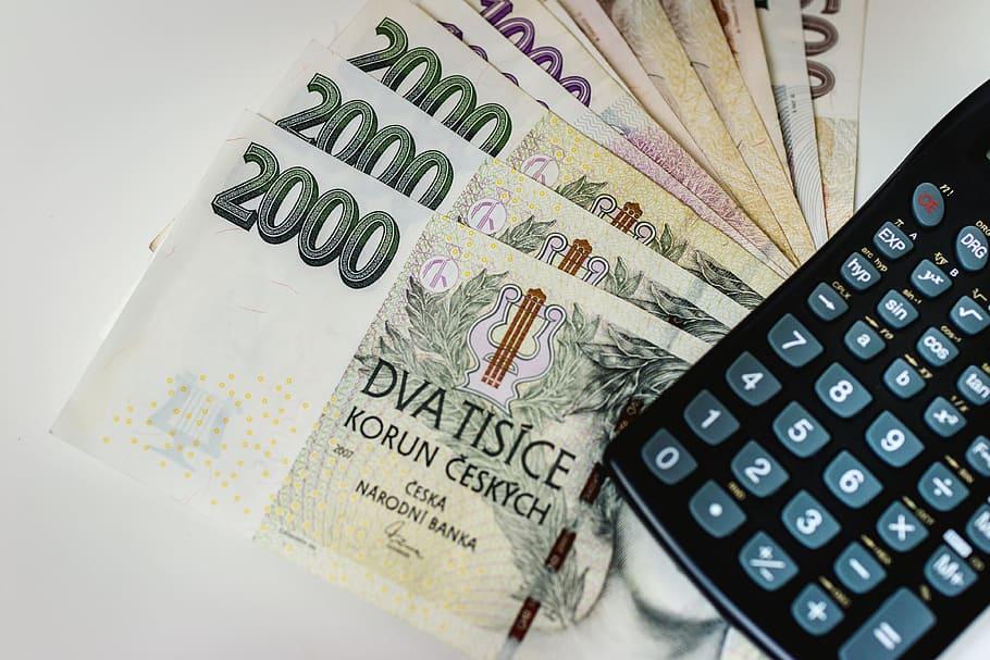 Půjčky poskytované zadluženým osobám se zákonitě musí pojit s nevýhodnými podmínkami a vysokými poplatky. Společnosti se jimi chrání proti riziku nesplácení, které je u osob s dluhy či dokonce v exekuci velmi vysoké.